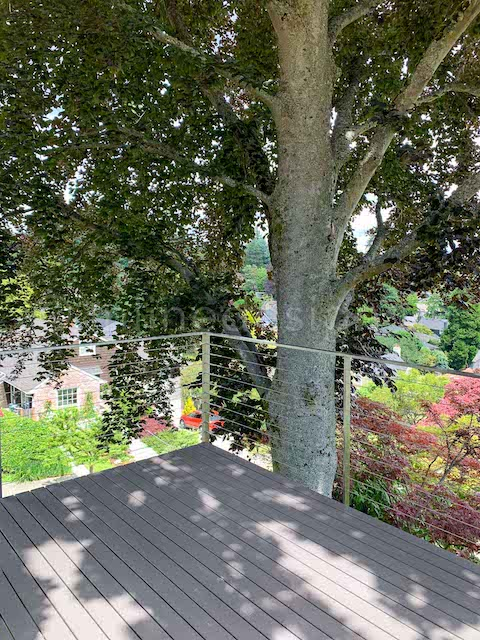cable railing deck tree