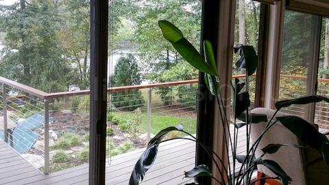 plant indoor railing